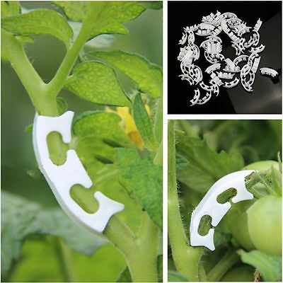 10Pcs Tomato Trellis Clip Retaining Holder Tomato Clip Tool Fixing Clips