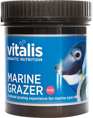 New Era Vitalis Mini Marine Grazer 110g - Suction Fixing Included Fish Food