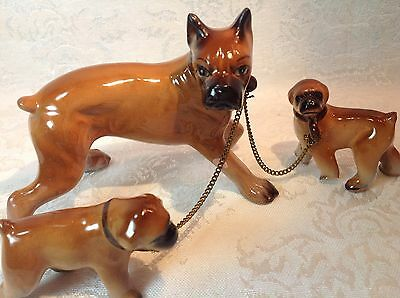 Vintage Boxer Dogs - Mom with 2 Puppies on Chains