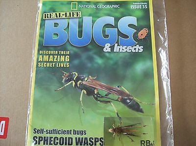 National Geographic Real-life Bugs & Insects magazine Issue 35
