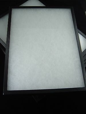 two jewelry display case riker mount display box collectors box 12 X 16 X 7/8""