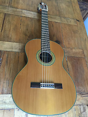 Beginners student Classical Guitar - Solid Top - Laminate back and side inc Case