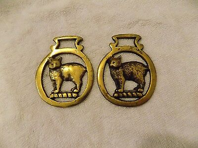 2 Vintage Brass 'Cat' Horse Medallion Bridle Saddle Ornament