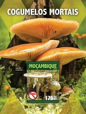 Z08 IMPERFORATED MOZ16104b MOZAMBIQUE 2016 Mushrooms MNH