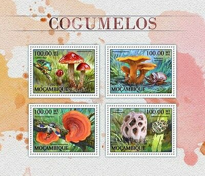 Z08 IMPERFORATED MOZ16507a MOZAMBIQUE 2016 Mushrooms MNH Mint