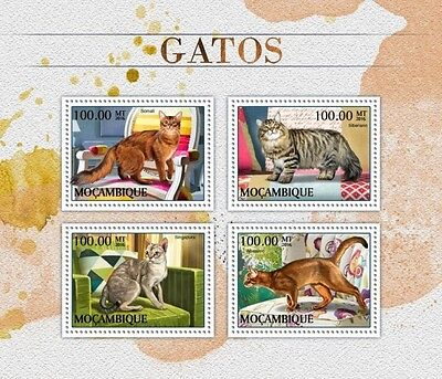 Z08 IMPERFORATED MOZ16501a MOZAMBIQUE 2016 Cats MNH Mint