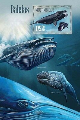 Z08 IMPERFORATED MOZ16204b MOZAMBIQUE 2016 Whales MNH