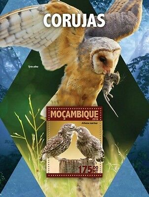 Z08 IMPERFORATED MOZ16111b MOZAMBIQUE 2016 Owls MNH