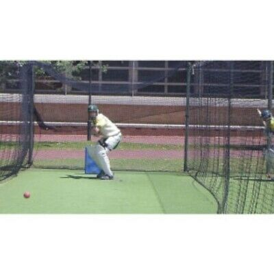 Buffalo Sports Heavy Weight Polyethylene Cricket Net - 80Ft X 10Ft (Crick110)