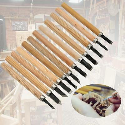 12 Pcs New Wood Carving Chisel Wood Work Tools Woodworking Chisels Carpenter  DN