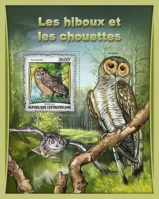 Z08 IMPERFORATED CA17011b CENTRAL AFRICAN REP 2017 Owls MNH Postfrisch