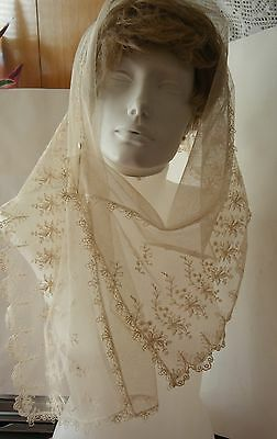 antique 19c SCARF STOLE VEIL lovely  Alencon Lace Embroidered Net bucks Point