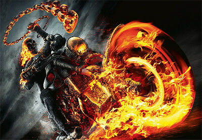 "12""x8"" Skull ghost rider flames vinyl sticker decal motorcycle guitar toolbox+"