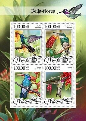 Z08 IMPERFORATED MOZ16308a MOZAMBIQUE 2016 Colibri MNH