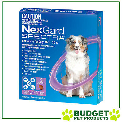 NexGard Spectra Chewables For Dogs Purple 15.1-30kg 3 Pack