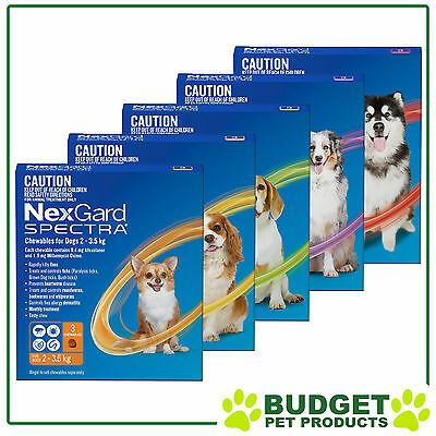NexGard Spectra For Dogs Flea Tick Heartworm Intestinal Worm - 3 Pack