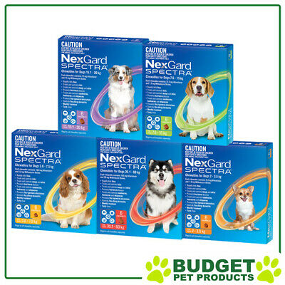 NexGard Spectra For Dogs 6 Pack