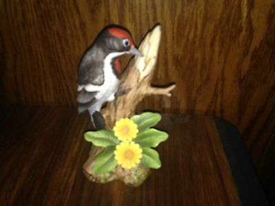 Collectible Vintage Bisque Porcelain Downy Woodpecker #9386 Andrea by Sadek