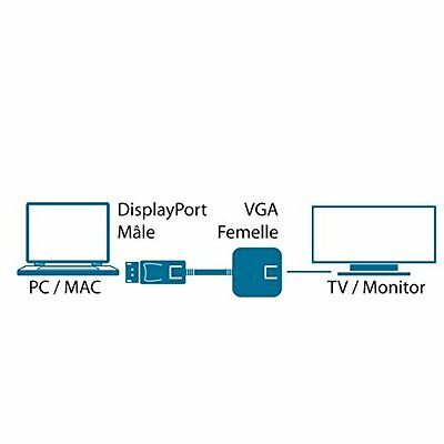 MCL CG-294C Displayport M VGA FM White cable interface/gender adapter - (e1z)