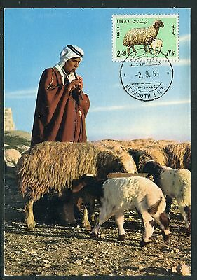 Liban - Carte Maximum 1969 - le Mouton