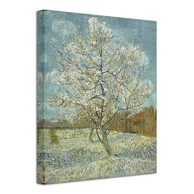 Canvas Print Picture Wall Art Van Gogh Painting Repro Home Decor Tree Framed