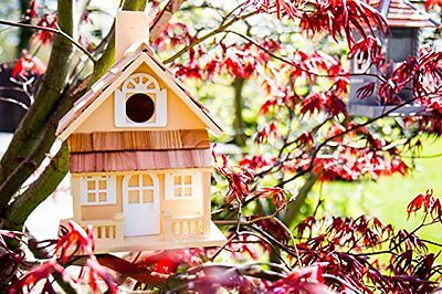 Giardino Bazaar hb-7001y Country Cottage Bird House – Yellow (g5l)