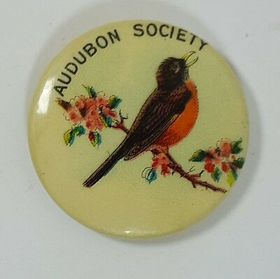 "Early Audubon Society 7/8"" Celluloid Pinback Button Pin"