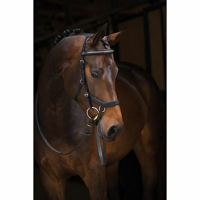 Horseware Ireland Rambo Micklem Horse Equestrian Comfortable Competition Bridle