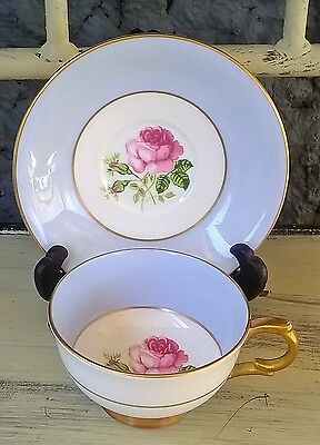 Royal Windsor Hand Painted Rose Pale Blue Tea Cup & Saucer
