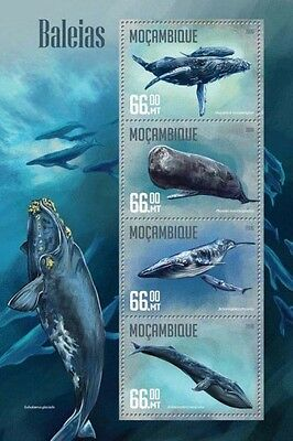 Z08 IMPERFORATED MOZ16204a MOZAMBIQUE 2016 Whales MNH
