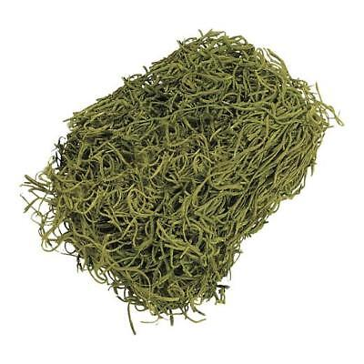 Knorr Prandell Decorative Jungle Grass Fibres 20g