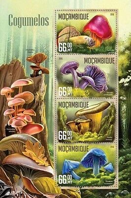 Z08 IMPERFORATED MOZ16201a MOZAMBIQUE 2016 Mushrooms MNH