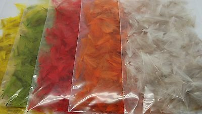 WILD DUCK 1gr CDC FEATHERS, FLY TYING MATERIALS, TOOLS