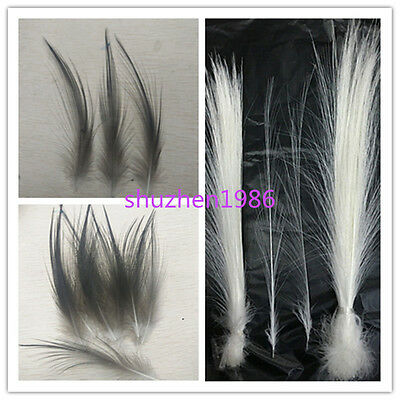 Wholesale beautiful rare feathers hair 4-18 inch / 10-45 cm black and white