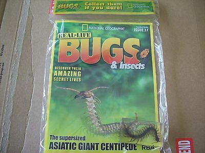 National Geographic Real-life Bugs & Insects magazine Issue 37