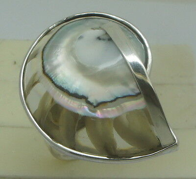 Handmade Nautilus Shell 925 Sterling Silver - Ring (Size P, Adjustable) #A87