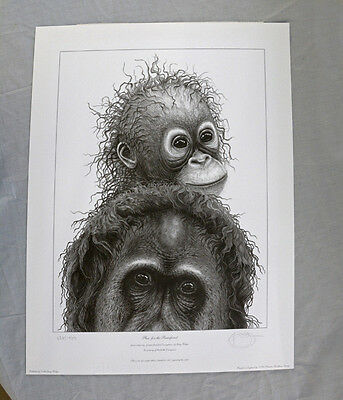 "Gary Hodges limited edition print - ""Plea for the Rainforest"""