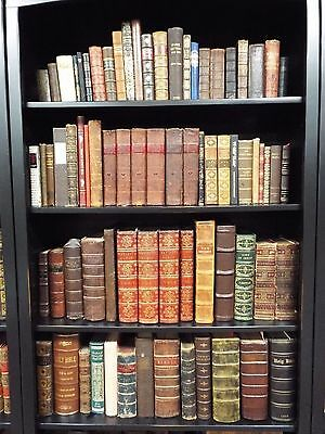 Rare Collection of 50 Bibles in 50 Languages (See Pics & descript)  many 1st eds