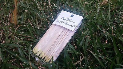 "1 Dozen Sulfur Matches ""Spunks"" - Antique/Primitive Firestarting"