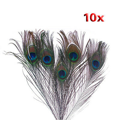 5x(10pz x Natural Peacock Feathers - colore naturale B1J7 B6T1 Q7C5