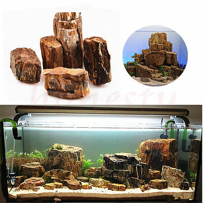 100g Charm Aquarium Wood Fossils Fish Tank Underwater Ornament Decoration Gift