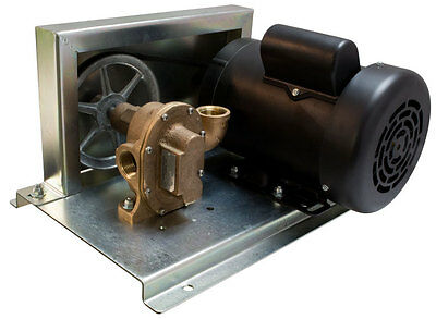 HP-476  Rotary Bronze Gear Pump - With Motor