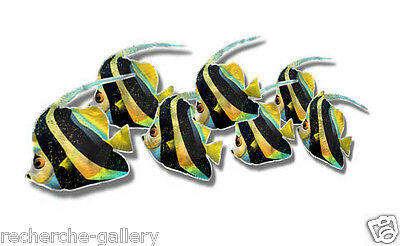 Fish Cutout Metal Art Contemporary Home Decor Metal Wall Sculpture Tropical