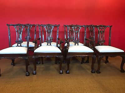 8 Exquisite Plush White Velvet Chippendale Style Chairs Pro French Polished