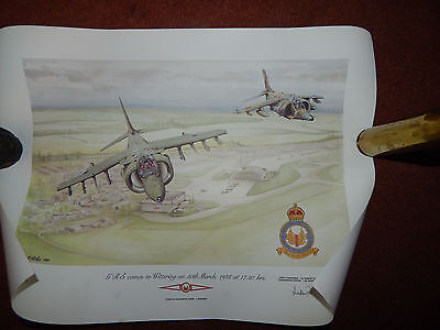 limited edition print Harrier at wittering signed