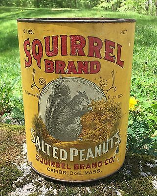 RARE Vintage SQUIRREL BRAND Salted Peanuts 10 Lbs Tin Can Advertising Sign