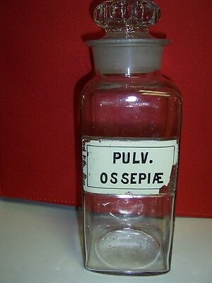 1800s Drug Store Bottle w/ Label Under Glass PULV. OSSEPIAE Wide Mouth 101/8 Hig