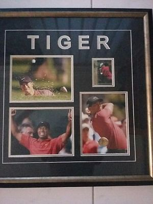 Tiger Woods - signed Pictures