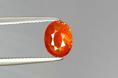 1.530 Ct Ultra!! Best Very Rarest Orange Color 100% Natural Unheated Kyanite !!!