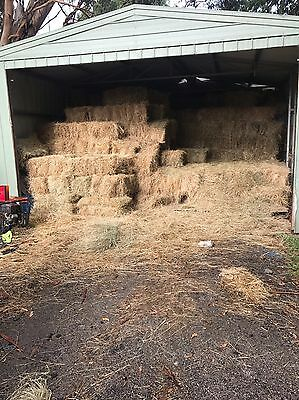 Small Square Pasture Hay